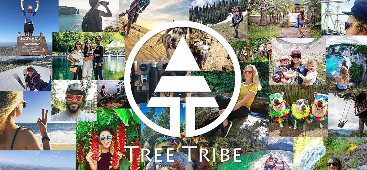 tree-tribe-brand