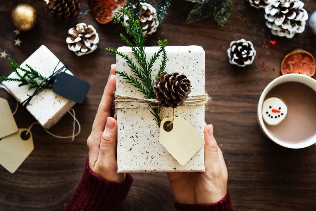 zero-waste christmas gift pinecone natural