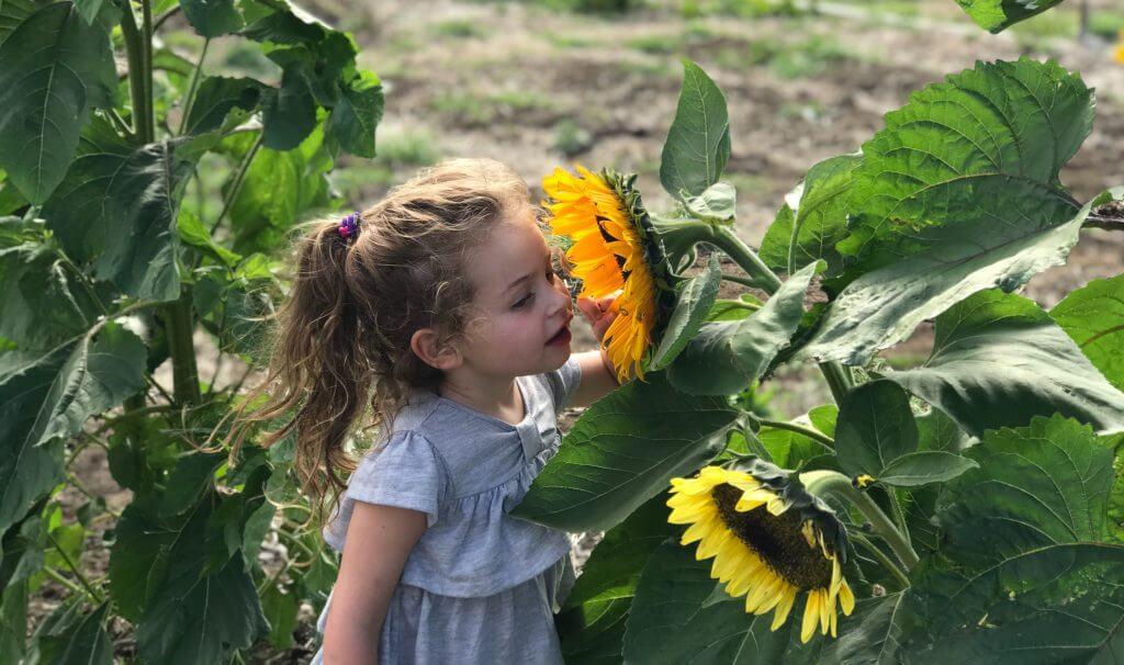 zero-waste-kids-sunflowers
