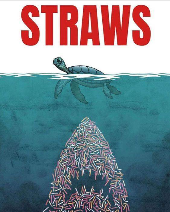 straws-kill-pollution