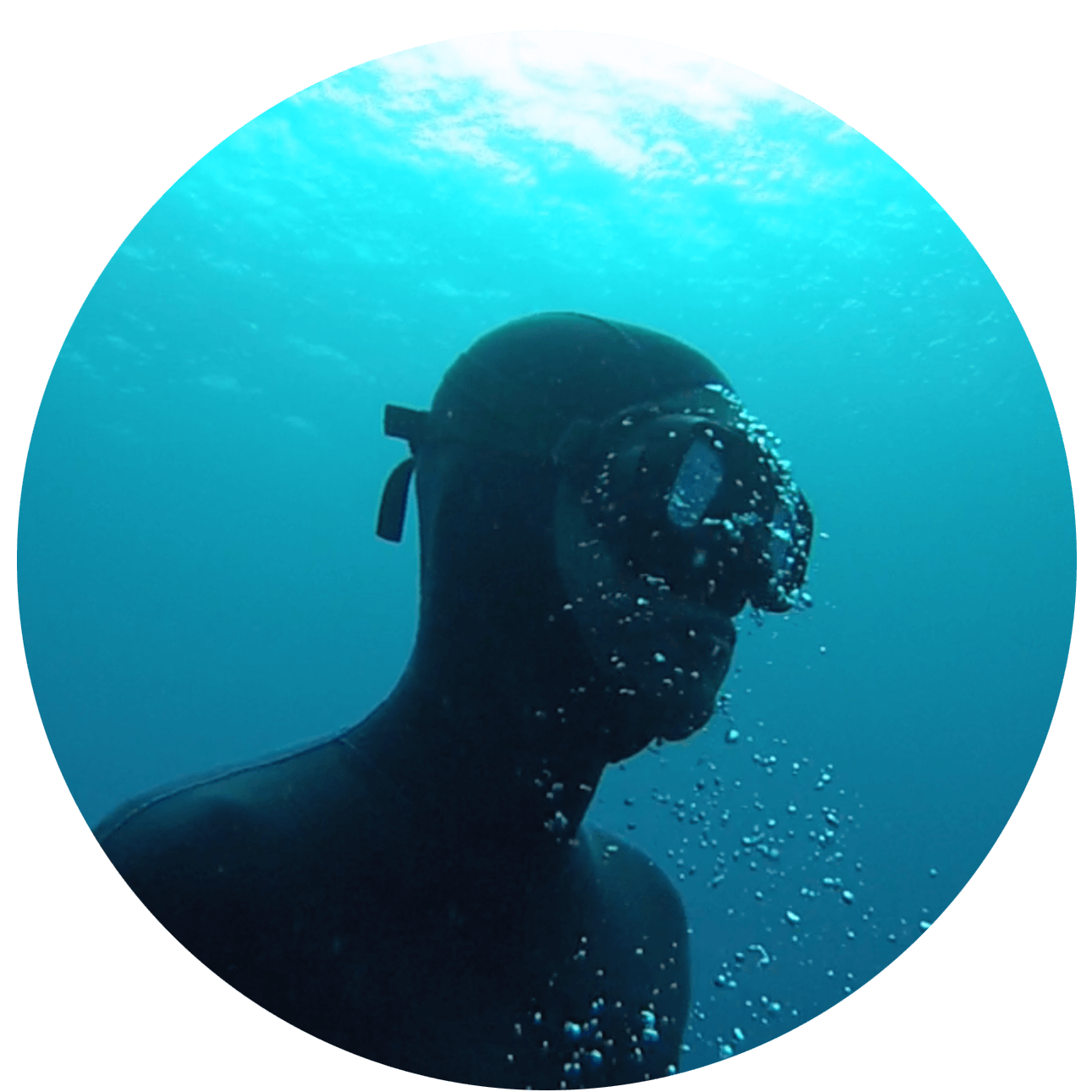 david-freediving
