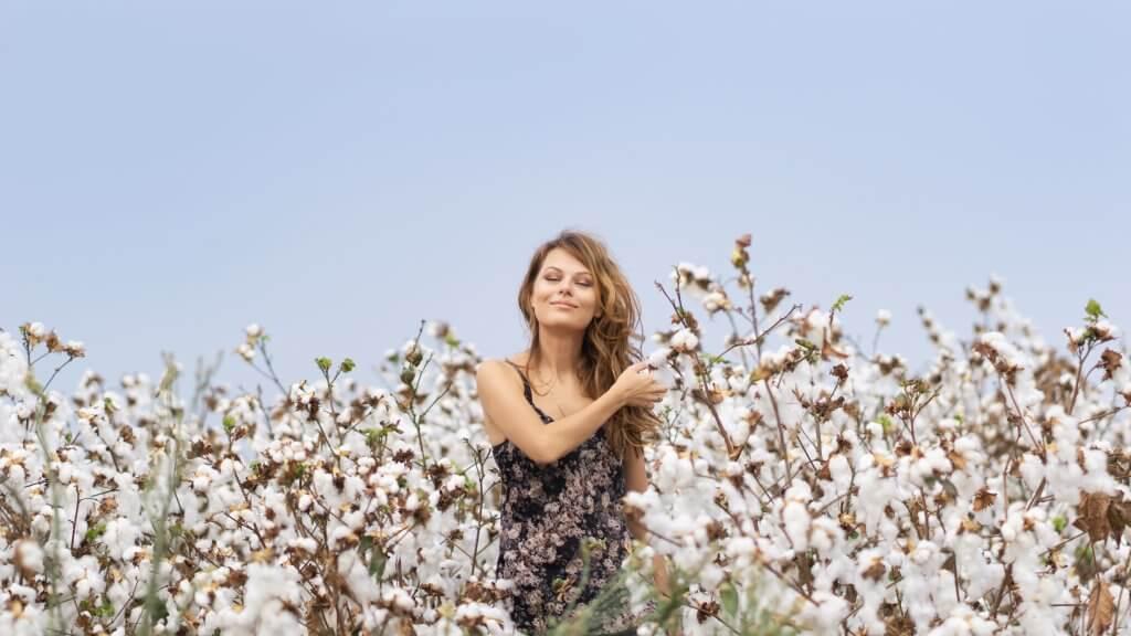 cotton-field