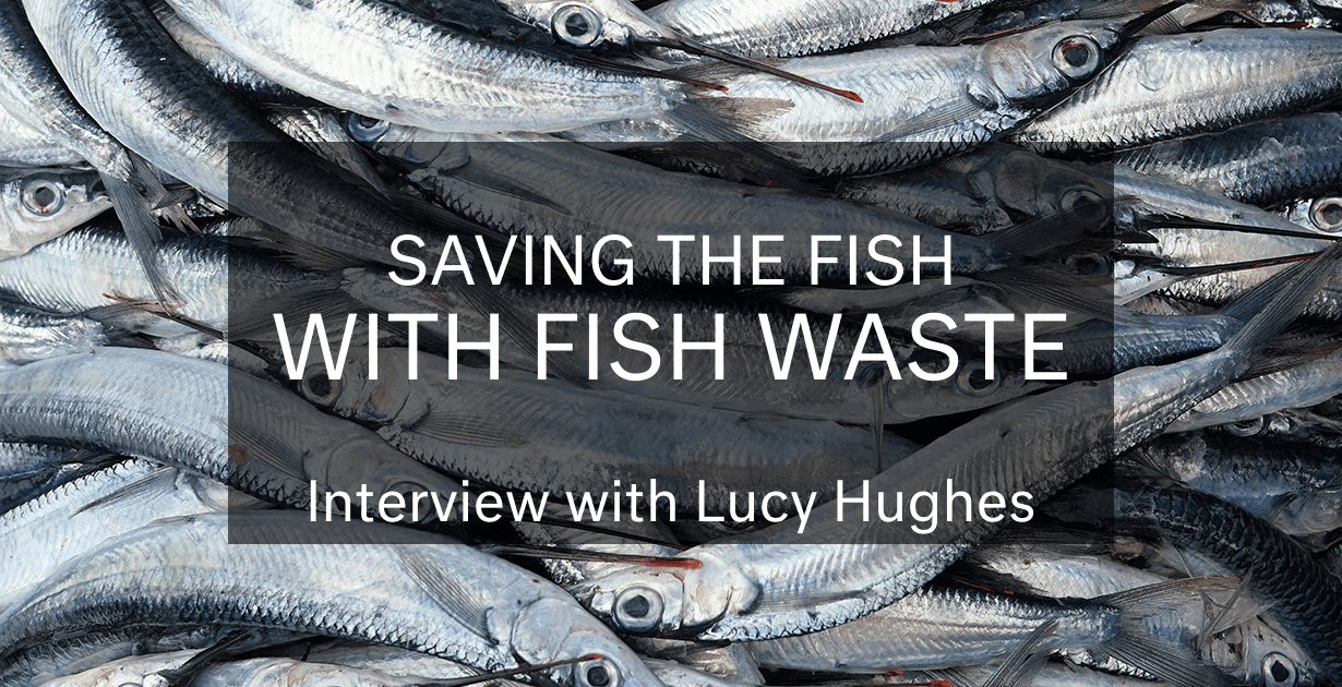 Saving the Fish… with Fish Waste: Interview with Lucy Hughes (MarinaTex)