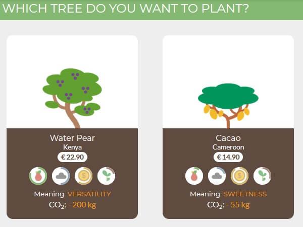 treedom-tree-example
