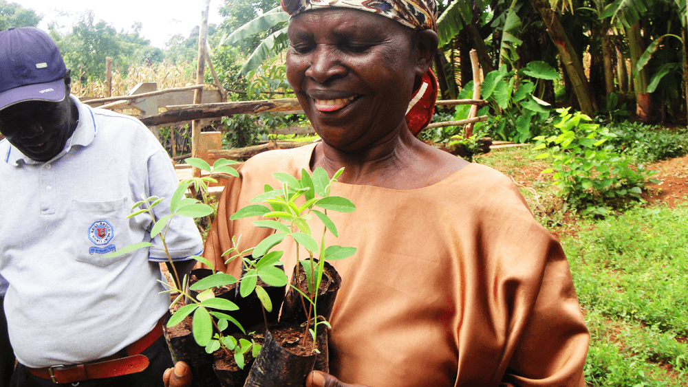 treedom-kenya-planting