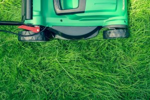 best-electric-lawn-mowers-uk